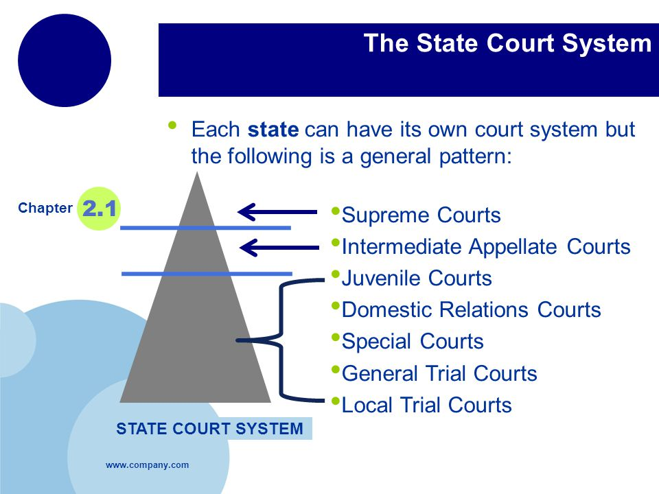 www.company.com Company LOGO The State Court System Each state can have its own court system but the following is a general pattern: Chapter 2.1 STATE COURT SYSTEM Supreme Courts Intermediate Appellate Courts Juvenile Courts Domestic Relations Courts Special Courts General Trial Courts Local Trial Courts
