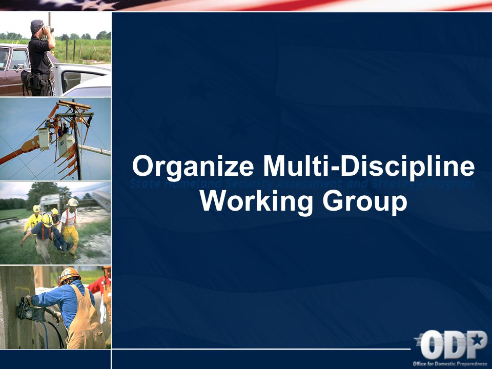 State Homeland Security Assessment and Strategy Program Organize Multi-Discipline Working Group