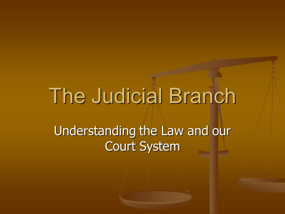 Most Cases are solved more Locally… Federal courts are located in every state.