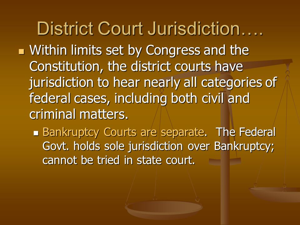The United States District Courts are the trial courts of the federal court system.
