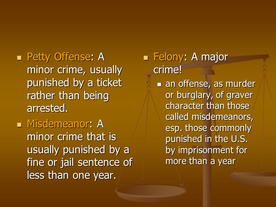 Petty Offense: A minor crime, usually punished by a ticket rather than being arrested.