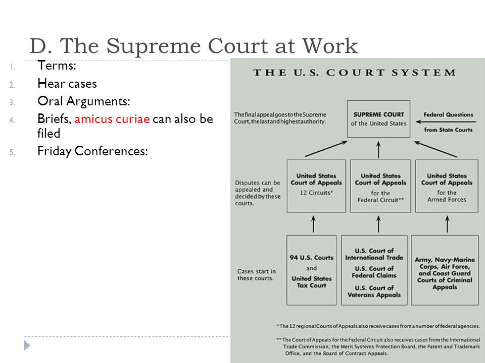 D. The Supreme Court at Work 1. Terms: 2. Hear cases 3. Oral Arguments: 4. Briefs, amicus curiae can also be filed 5. Friday Conferences: