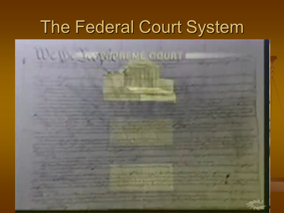 SECTION8 The Federal Court System