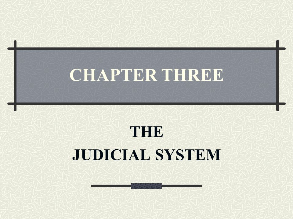 CHAPTER THREE THE JUDICIAL SYSTEM