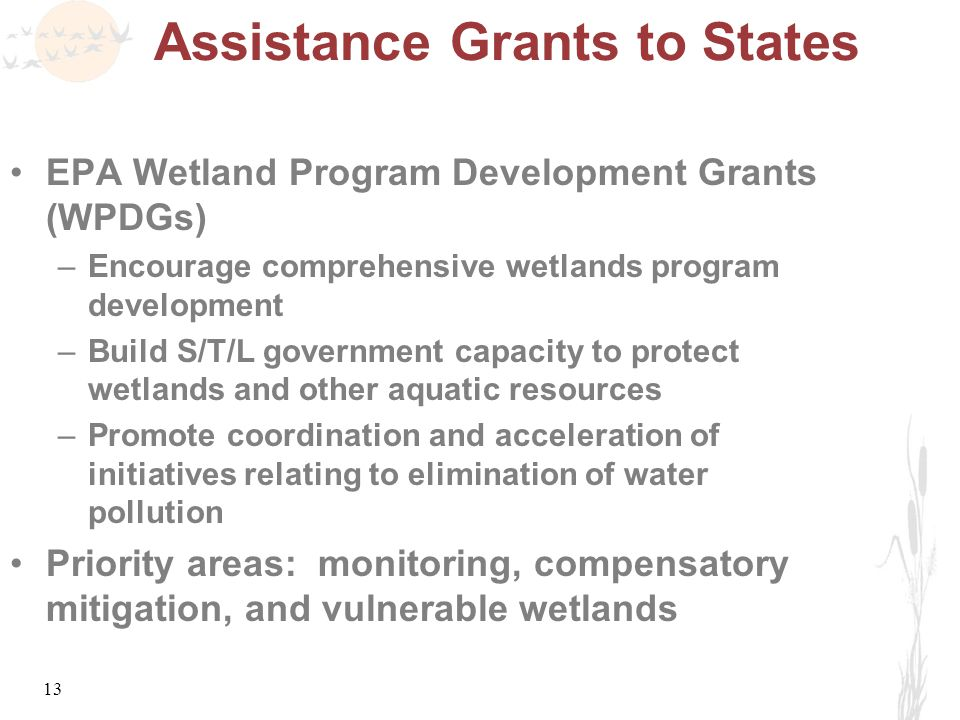 13 Assistance Grants to States EPA Wetland Program Development Grants (WPDGs) –Encourage comprehensive wetlands program development –Build S/T/L government capacity to protect wetlands and other aquatic resources –Promote coordination and acceleration of initiatives relating to elimination of water pollution Priority areas: monitoring, compensatory mitigation, and vulnerable wetlands