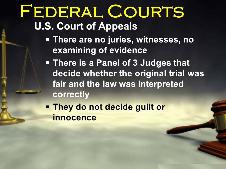 Federal Courts U.S. Court of Appeals  There are no juries, witnesses, no examining of evidence  There is a Panel of 3 Judges that decide whether the