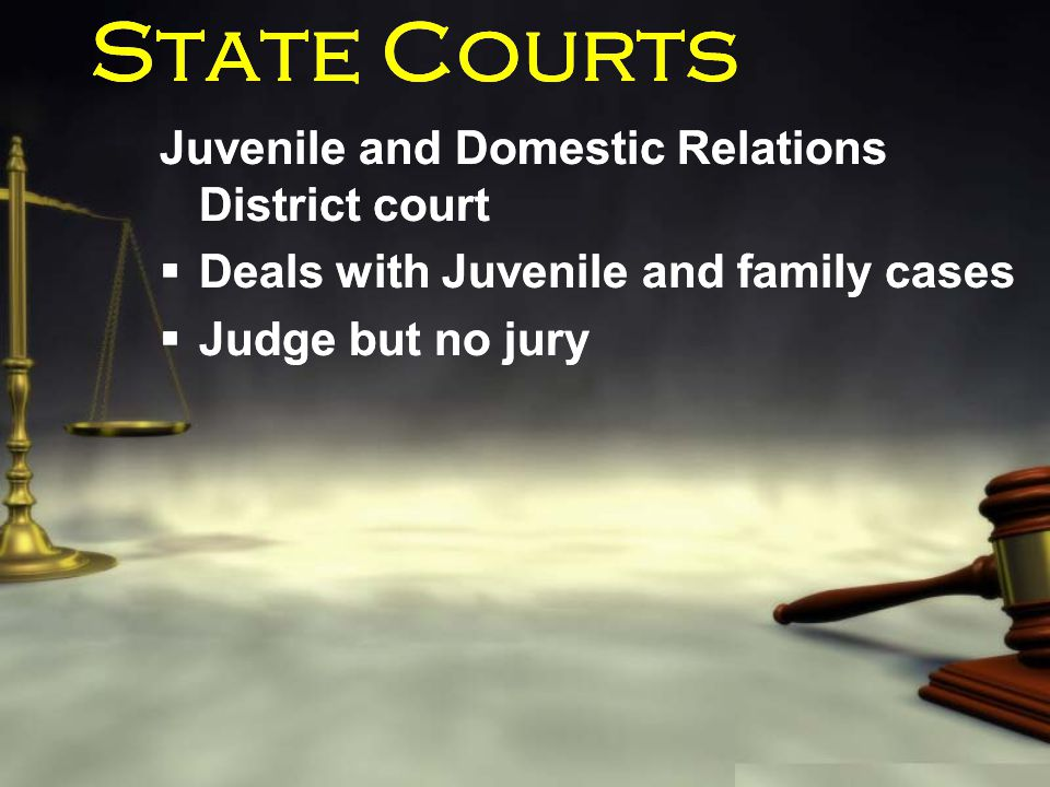 State Courts Juvenile and Domestic Relations District court  Deals with Juvenile and family cases  Judge but no jury Juvenile and Domestic Relations