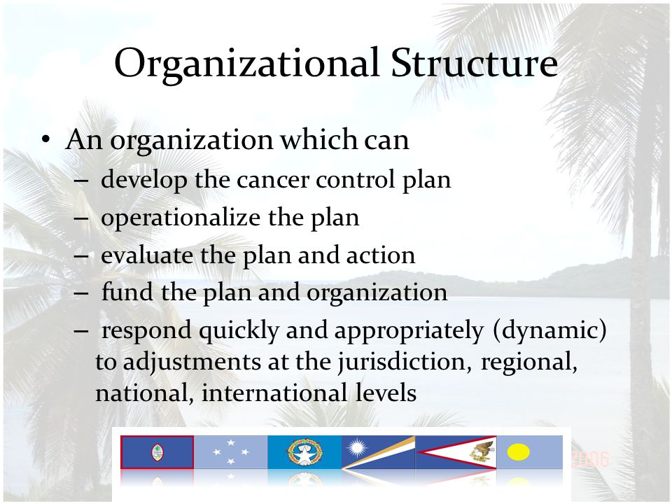 Definitions Comprehensive Cancer Control Plan is analogous to the NCD Roadmap Mobilization Framework == (Comprehensive Cancer Control Organization Network)