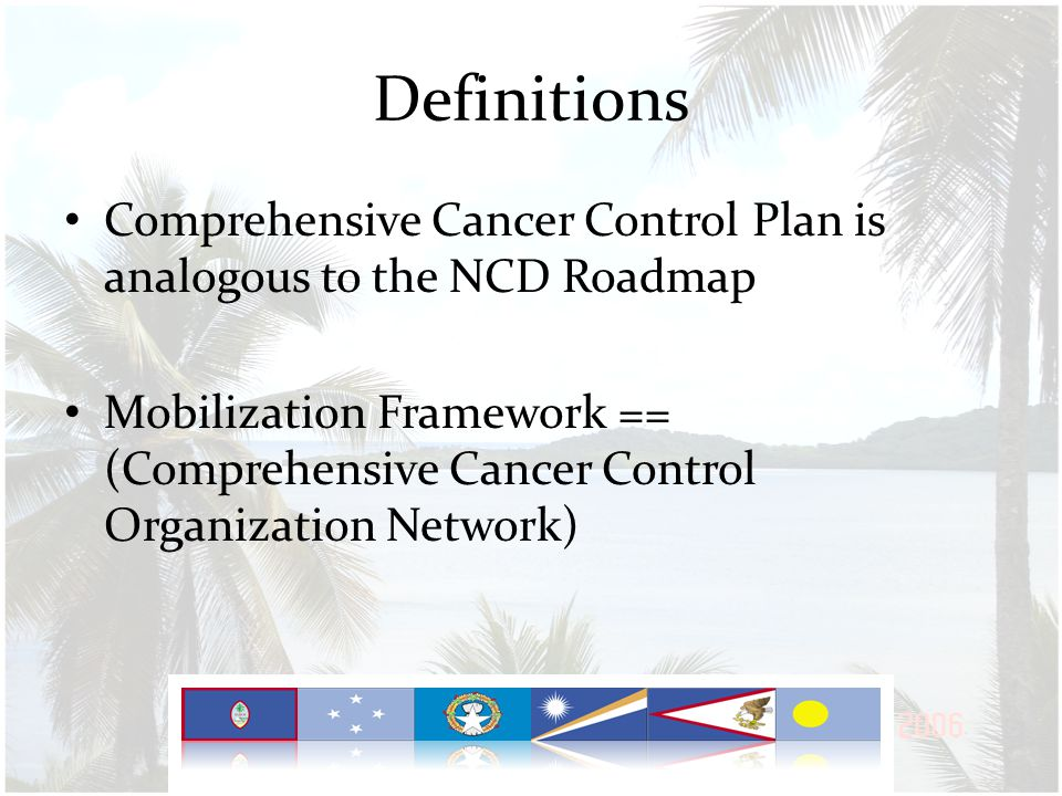 Definitions- Comprehensive Plan Comprehensive across the spectrum of disease – Primary Prevention – Early Detection & Screening – Treatment – Quality of Life / Survivorship – Cross-cutting principles: data & evaluation, policy – (Social Determinants) – (Disparity) Comprehensive with multisectoral and transdisciplinary participation