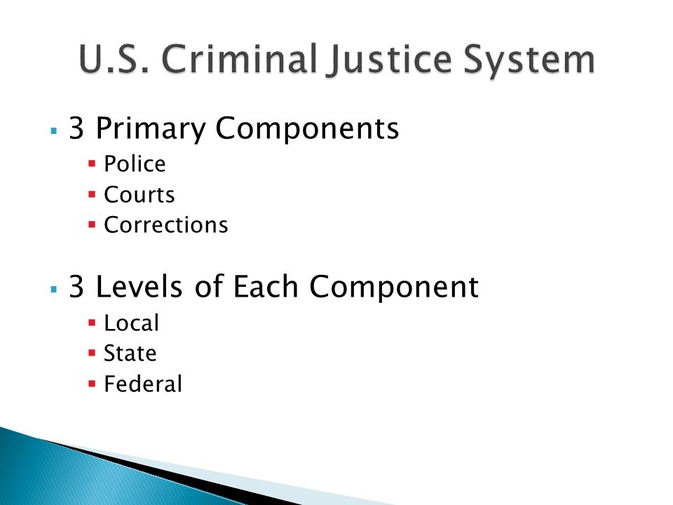  3 Primary Components  Police  Courts  Corrections  3 Levels of Each Component  Local  State  Federal