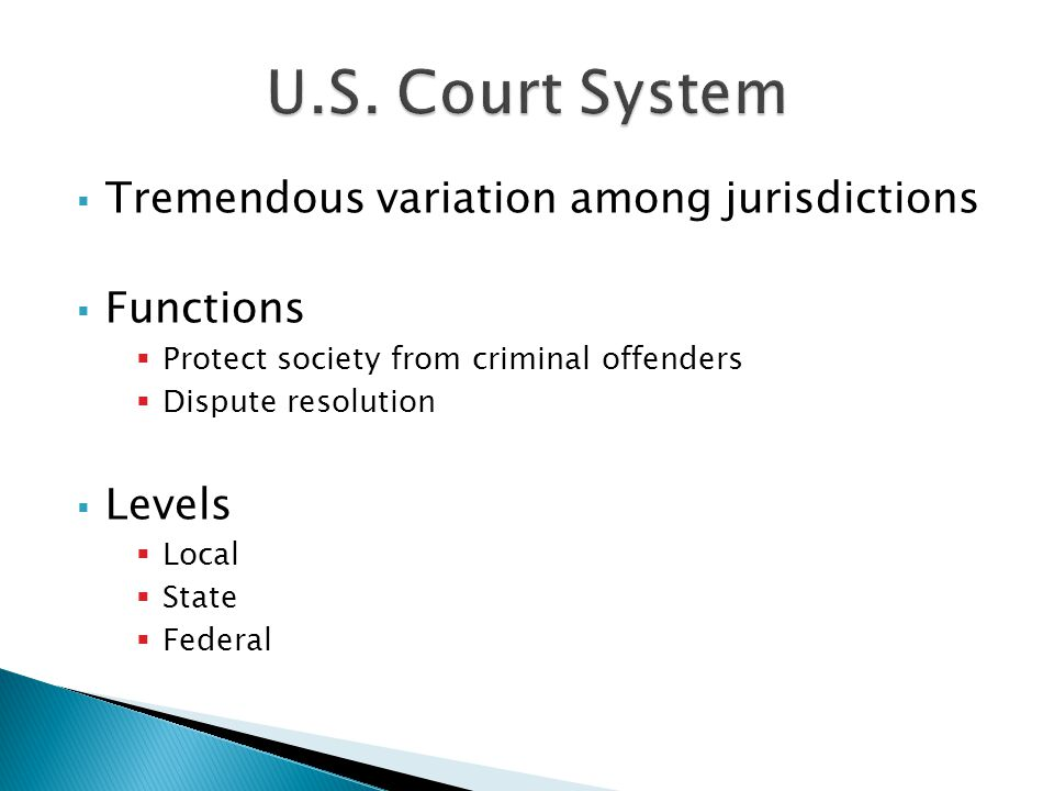  Tremendous variation among jurisdictions  Functions  Protect society from criminal offenders  Dispute resolution  Levels  Local  State  Federal