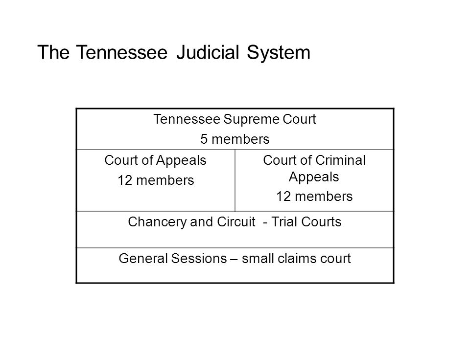 The Tennessee Judicial System Tennessee Supreme Court 5 members Court of Appeals 12 members Court of Criminal Appeals 12 members Chancery and Circuit