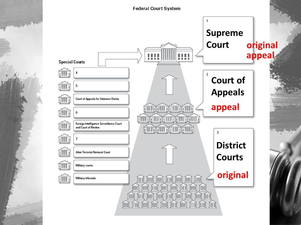 District Courts Court of Appeals Supreme Court original appeal original appeal