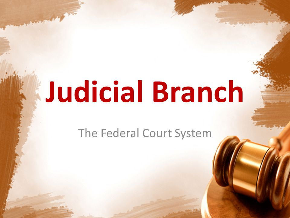 District Courts 94 courts Lowest level of the federal judicial system Trial courts for both criminal & civil federal cases District Courts have original jurisdiction to hear cases involving – Constitutional law – Cases involving citizens of different states Federal Court System