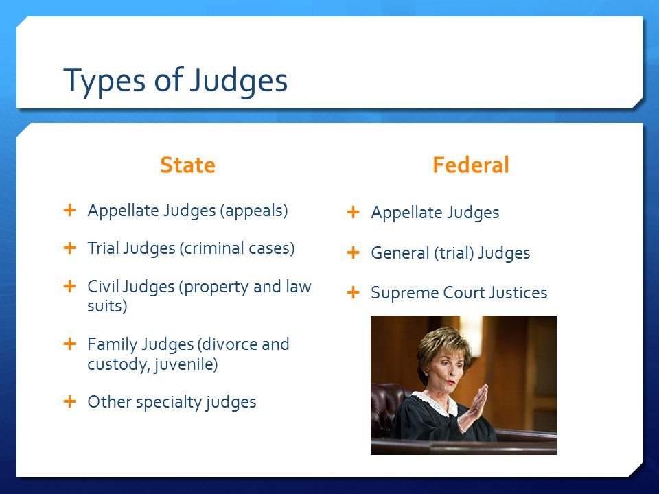 Types of Judges State  Appellate Judges (appeals)  Trial Judges (criminal cases)  Civil Judges (property and law suits)  Family Judges (divorce and custody, juvenile)  Other specialty judges Federal  Appellate Judges  General (trial) Judges  Supreme Court Justices