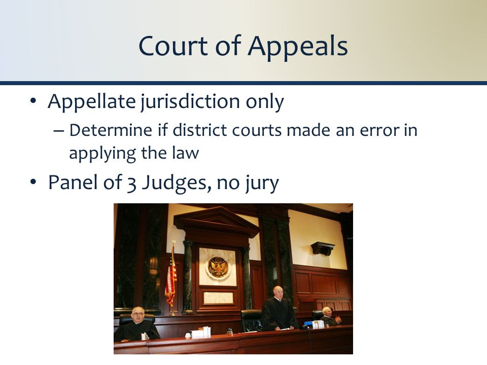 Court of Appeals Appellate jurisdiction only – Determine if district courts made an error in applying the law Panel of 3 Judges, no jury