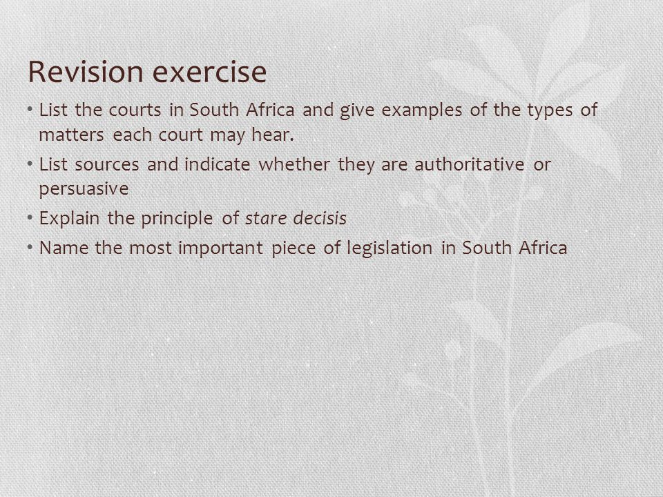 Revision exercise List the courts in South Africa and give examples of the types of matters each court may hear.