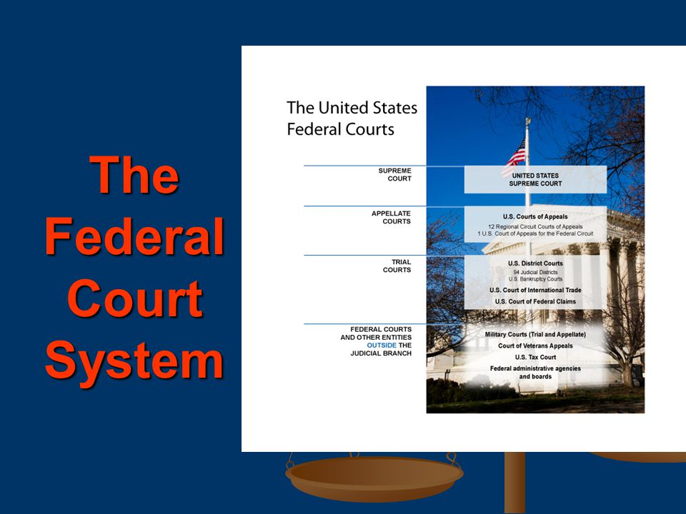 The federal courts try cases involving federal laws and the Constitution.