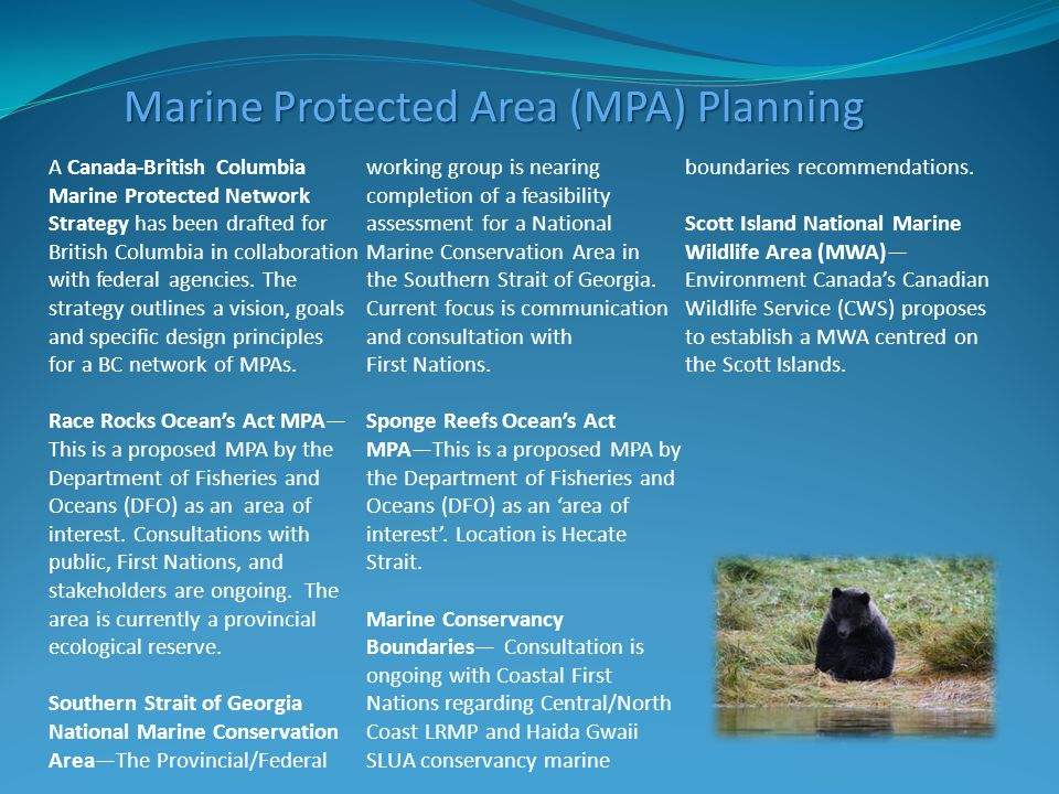 A Canada-British Columbia Marine Protected Network Strategy has been drafted for British Columbia in collaboration with federal agencies.