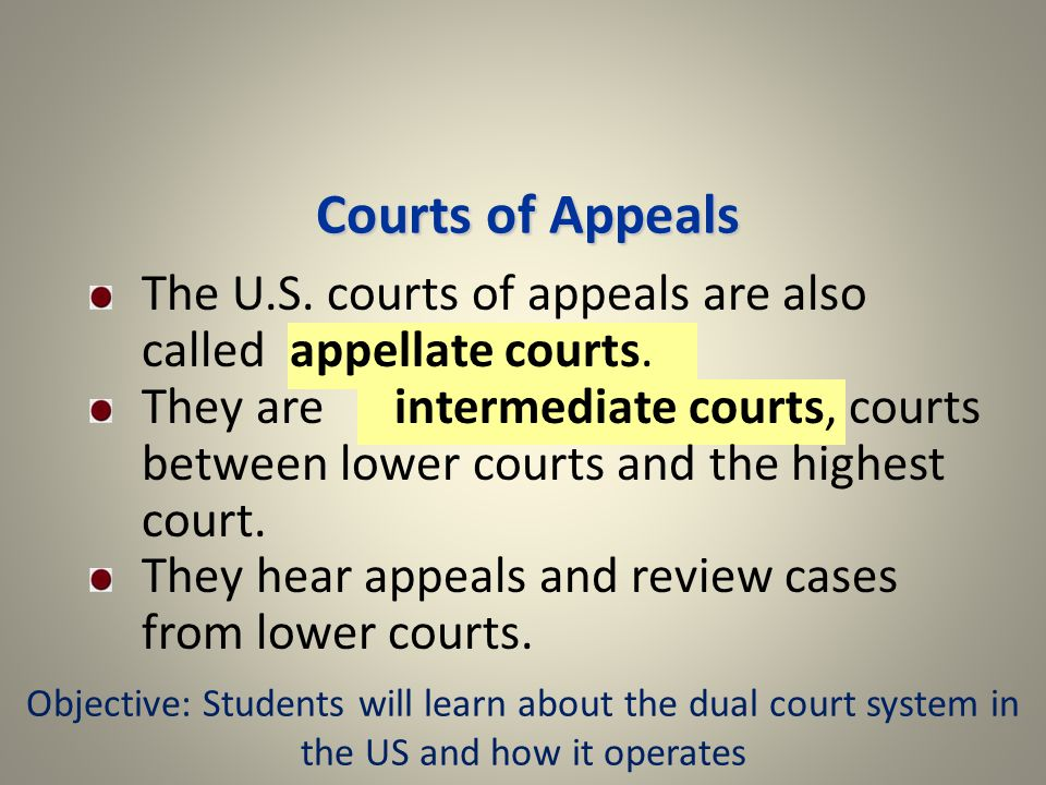 Courts of Appeals The U.S. courts of appeals are also called appellate courts.