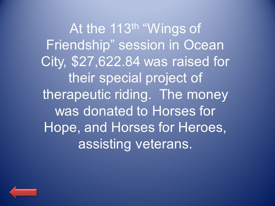 At the 113 th Wings of Friendship session in Ocean City, $27,622.84 was raised for their special project of therapeutic riding.