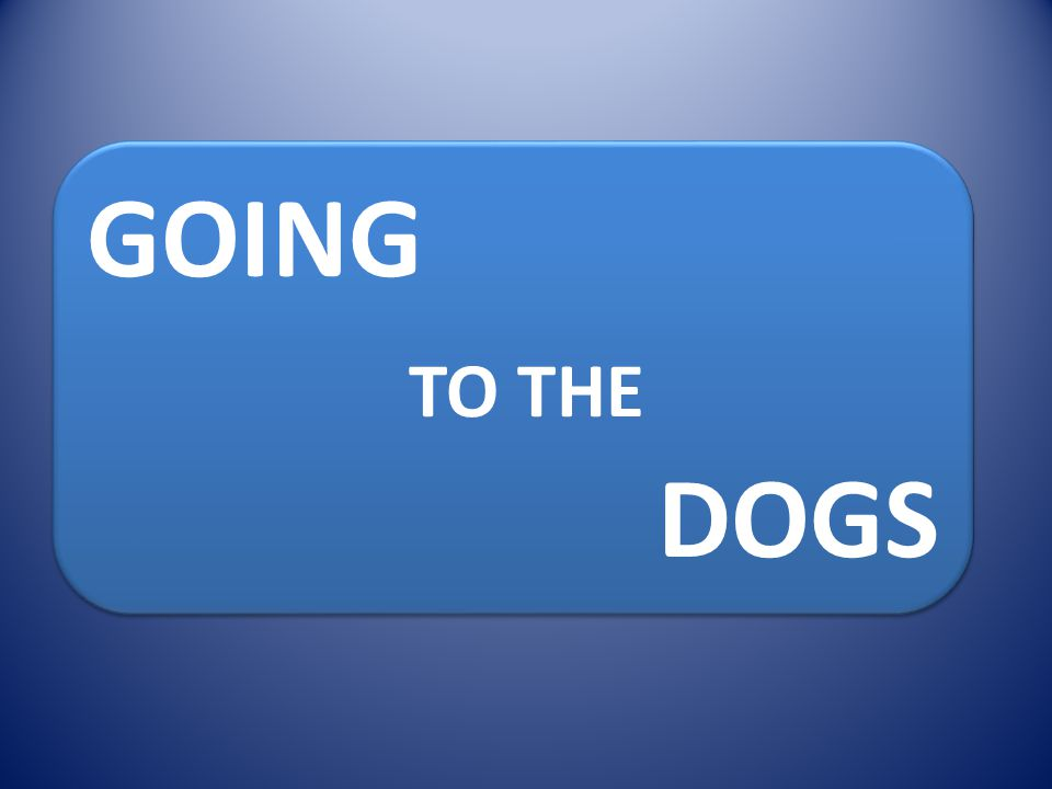 GOING TO THE DOGS GOING TO THE DOGS