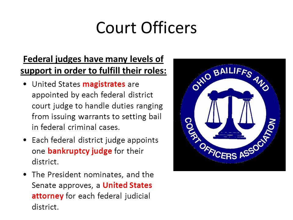Court Officers Federal judges have many levels of support in order to fulfill their roles: United States magistrates are appointed by each federal dis