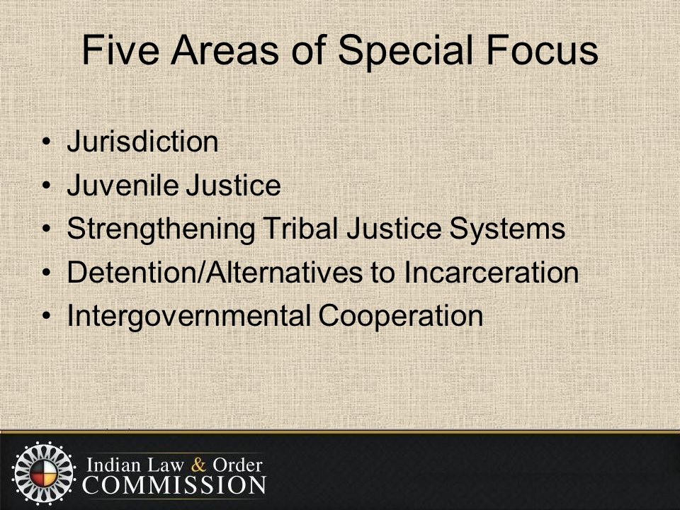 Five Areas of Special Focus Jurisdiction Juvenile Justice Strengthening Tribal Justice Systems Detention/Alternatives to Incarceration Intergovernmental Cooperation
