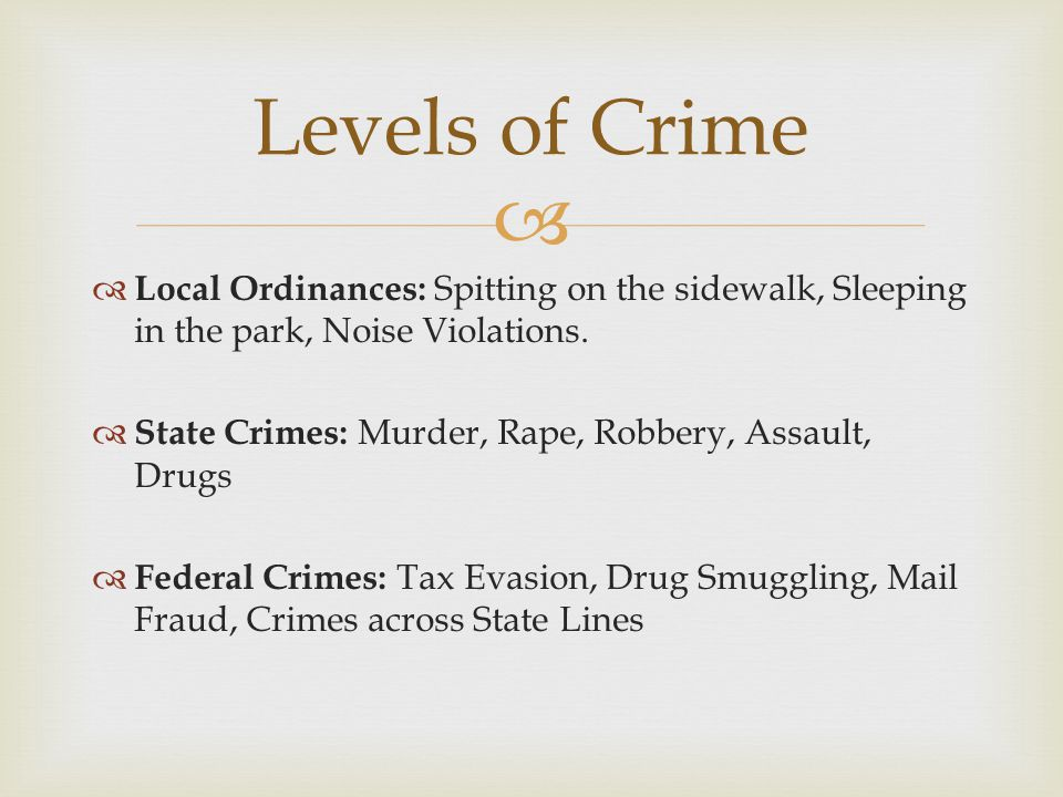   Local: Smyrna PD, Cobb County PD  State: Georgia State Police, GA DNR  Federal: FBI, CIA, DHS 3 levels of Law Enforcement Local State Federal LAWS.