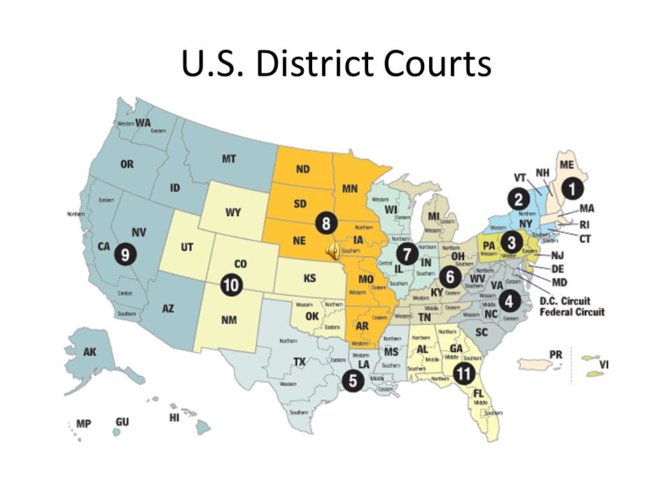 U.S. District Courts