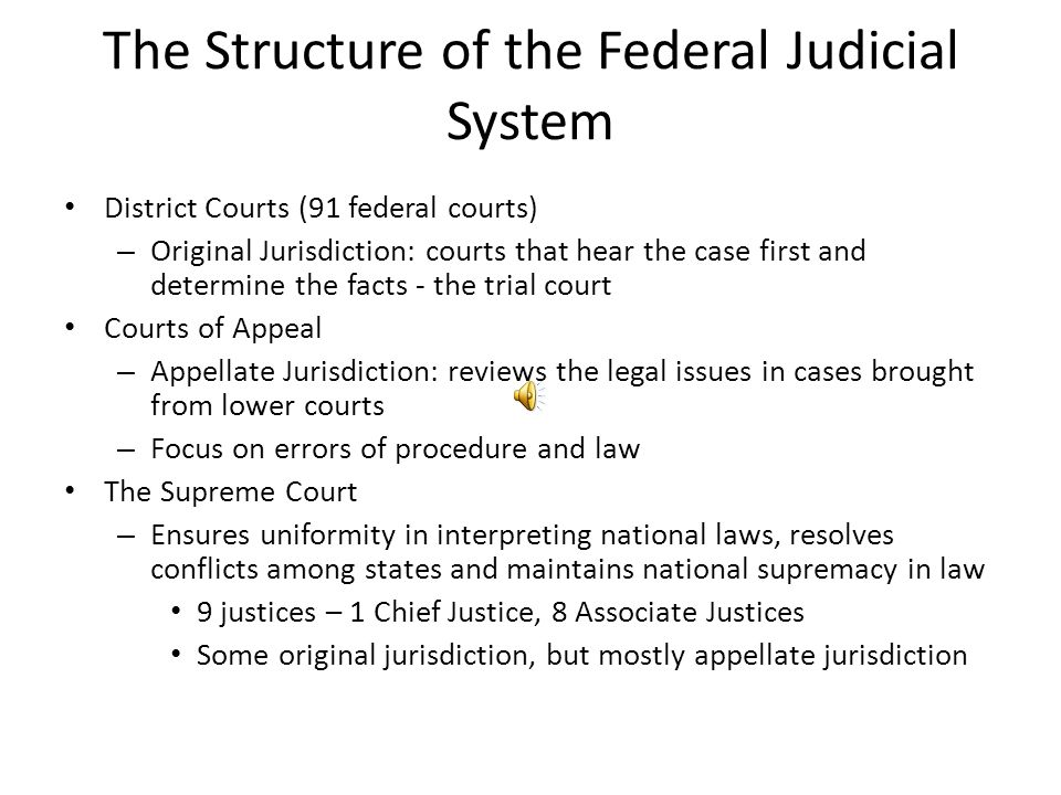 The Structure of the Federal Judicial System District Courts (91 federal courts) – Original Jurisdiction: courts that hear the case first and determin