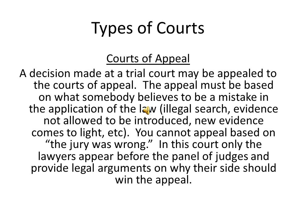 Types of Courts Courts of Appeal A decision made at a trial court may be appealed to the courts of appeal.
