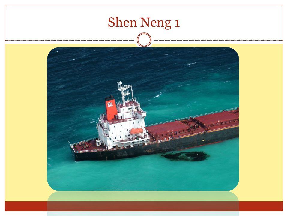 Shen Neng 1