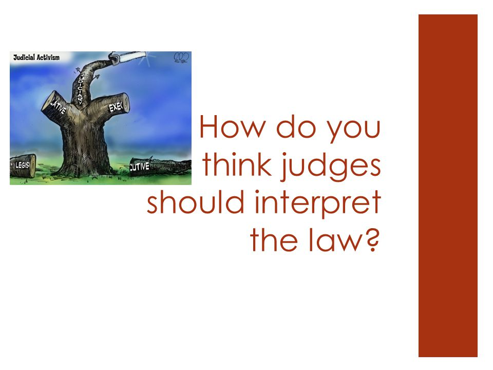Is Judicial Review the Final Say?