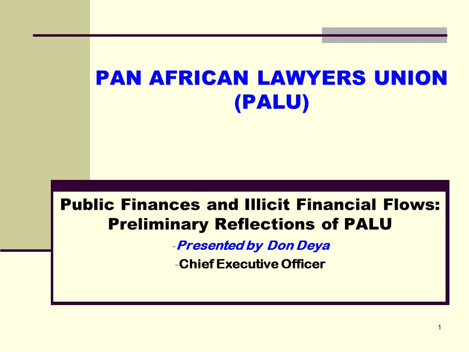 2013 – 2018: Strategic Planning Identity, Vision, Mission Our Identity Statement (who we are): PALU is a continental membership forum for African lawyers and lawyers' associations, which reflects the aspirations and concerns of the African people, and promotes shared interest Our Vision (the world we want to see): A united, just and prosperous Africa based on the rule of law and good governance Our Mission (why we exist; our core business): Advancing the law and the legal profession, the rule of law, good governance, human and peoples' rights and socio-economic development of the African continent 2