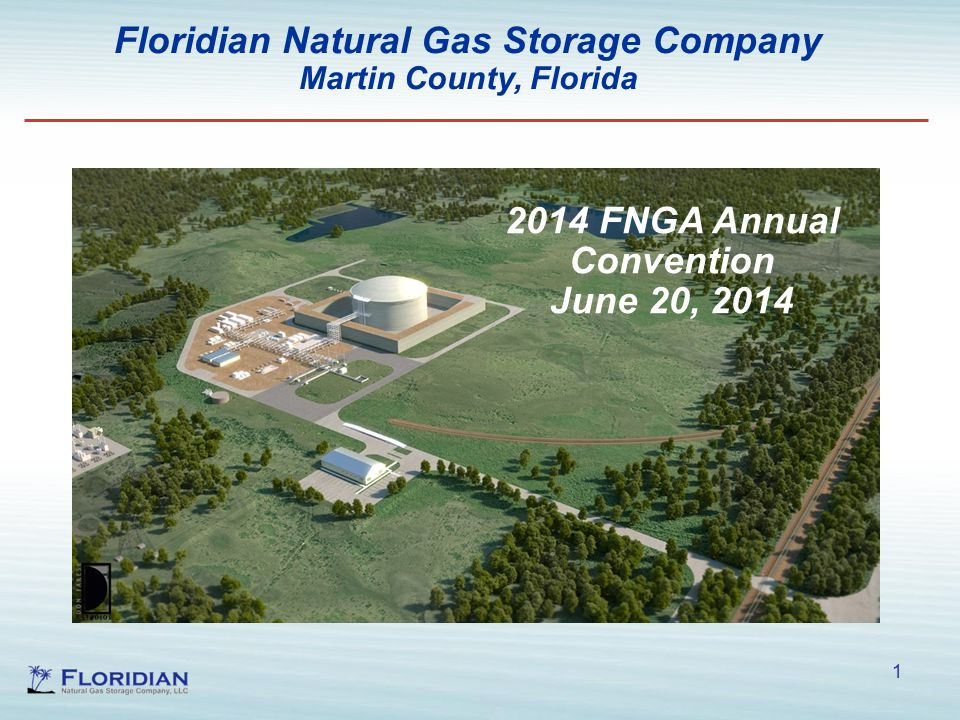 1 Floridian Natural Gas Storage Company Martin County, Florida 2014 FNGA Annual Convention June 20, 2014