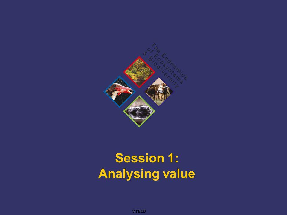 TEEB Training Session 1: Analysing value ©TEEB