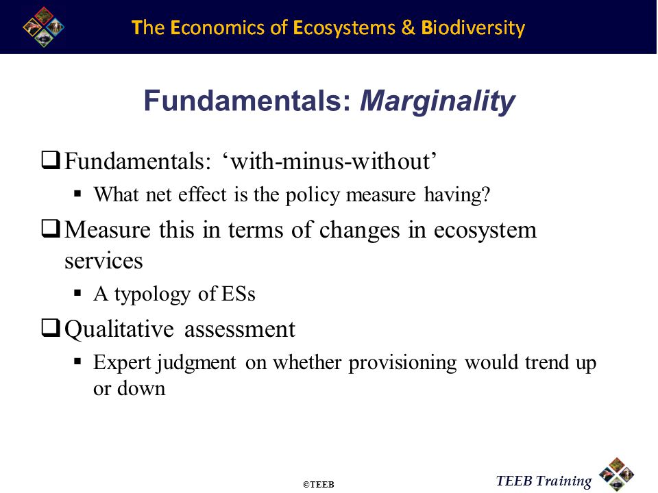 TEEB Training Fundamentals: Marginality  Fundamentals: 'with-minus-without'  What net effect is the policy measure having?  Measure this in terms o
