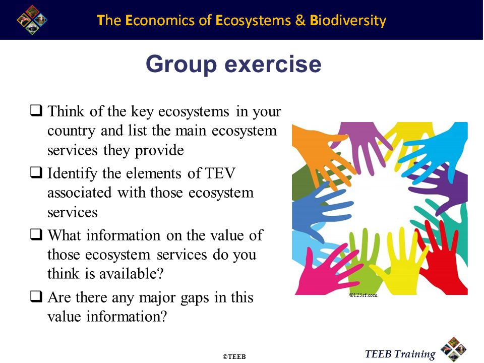 TEEB Training Group exercise  Think of the key ecosystems in your country and list the main ecosystem services they provide  Identify the elements o