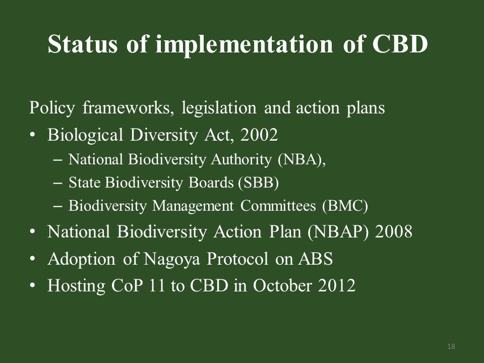 Status of implementation of CBD Policy frameworks, legislation and action plans Biological Diversity Act, 2002 – National Biodiversity Authority (NBA), – State Biodiversity Boards (SBB) – Biodiversity Management Committees (BMC) National Biodiversity Action Plan (NBAP) 2008 Adoption of Nagoya Protocol on ABS Hosting CoP 11 to CBD in October 2012 18