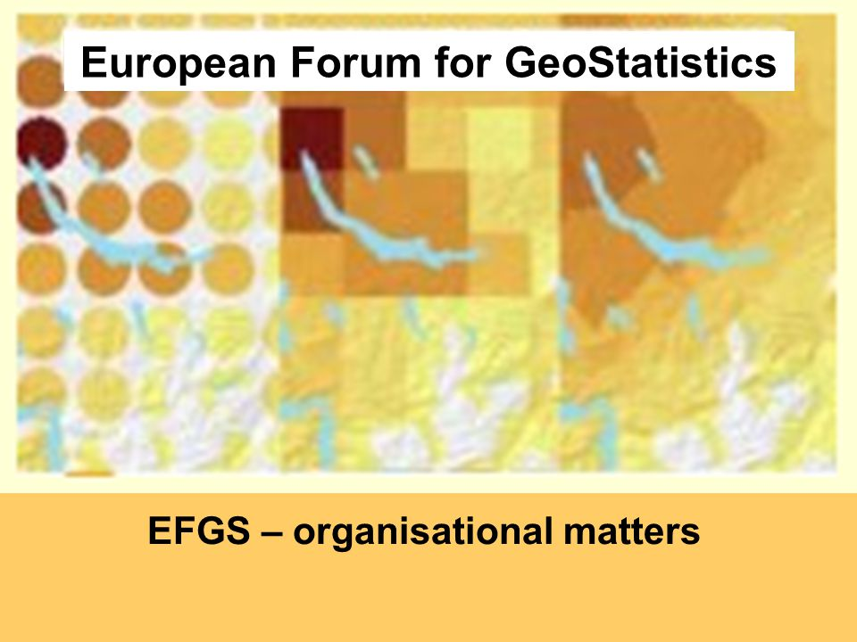 European Forum for GeoStatistics EFGS – organisational matters