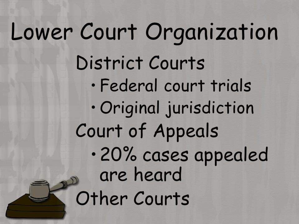 Lower Court Organization District Courts Federal court trials Original jurisdiction Court of Appeals 20% cases appealed are heard Other Courts