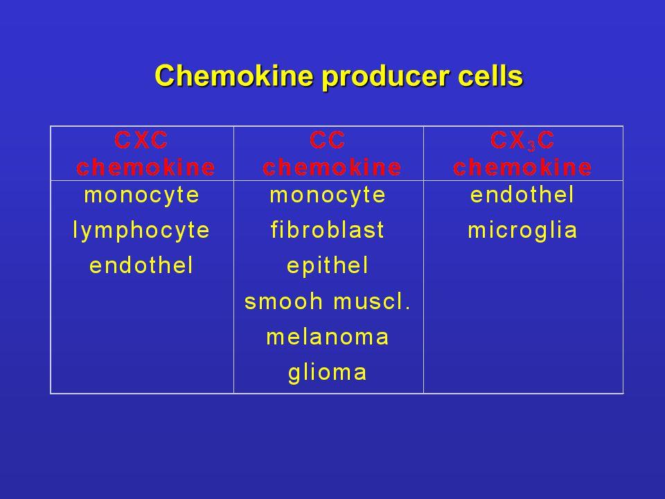 Chemokine producer cells
