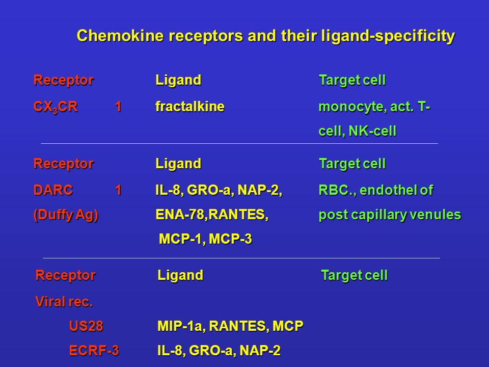 ReceptorLigandTarget cell CX 3 CR1fractalkine monocyte, act. T- cell, NK-cell ReceptorLigandTarget cell DARC1IL-8, GRO-a, NAP-2,RBC., endothel of (Duf
