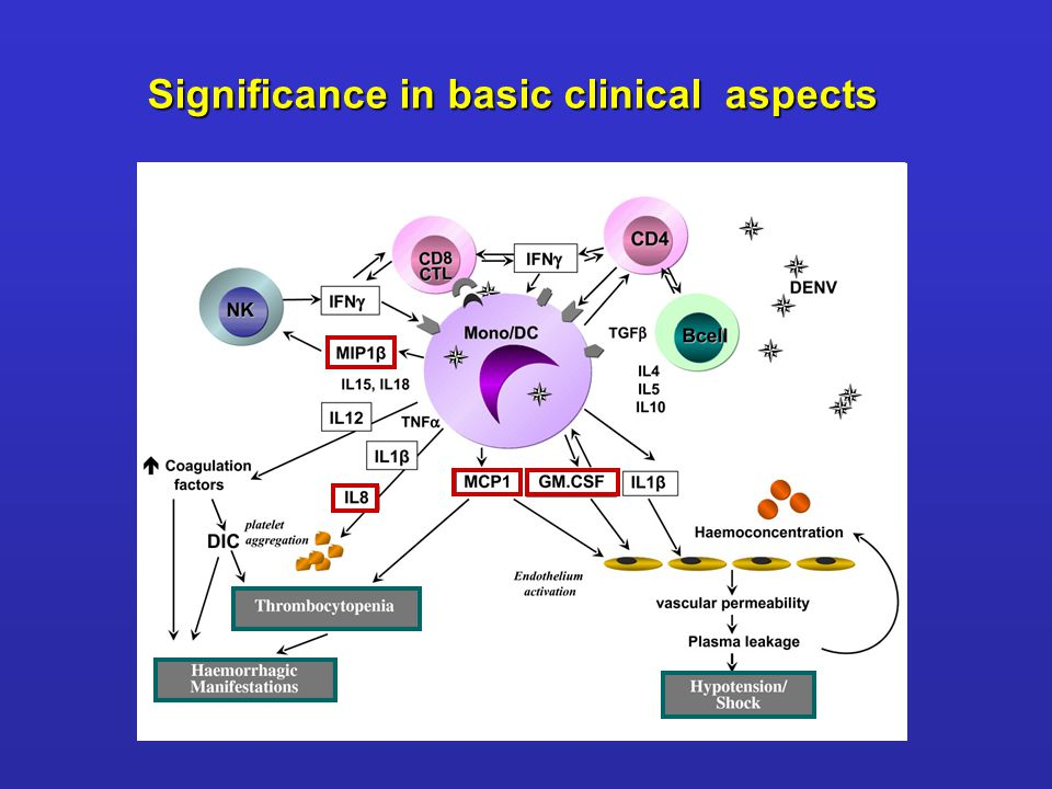 Significance in basic clinical aspects
