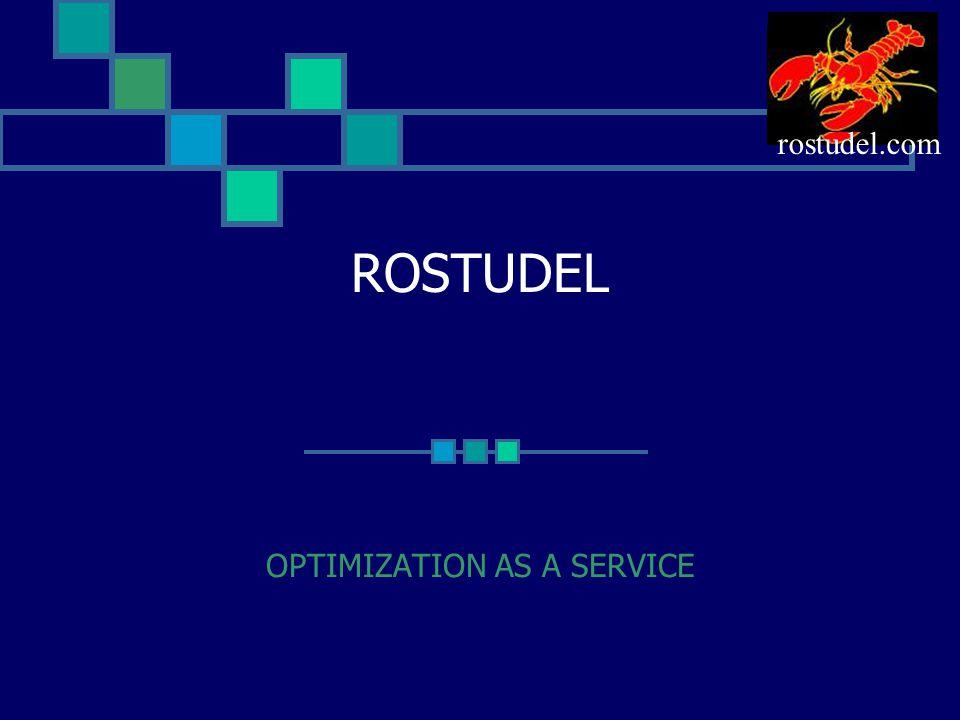 ROSTUDEL OPTIMIZATION AS A SERVICE rostudel.com