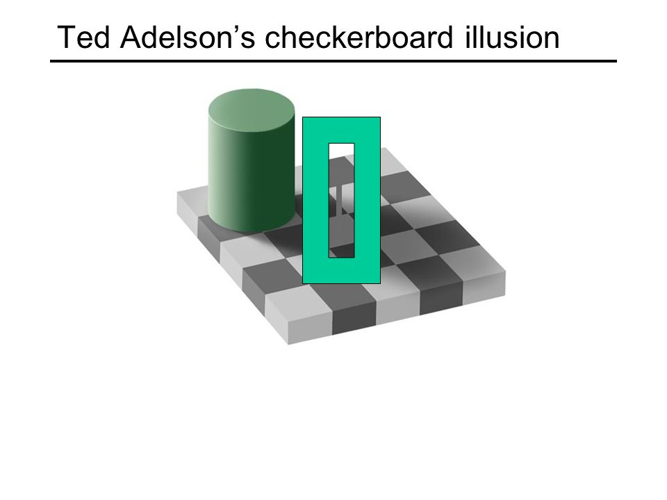 Ted Adelson's checkerboard illusion
