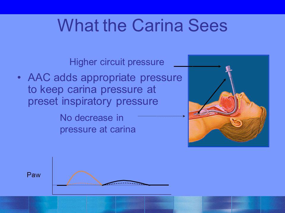 AAC adds appropriate pressure to keep carina pressure at preset inspiratory pressure What the Carina Sees Higher circuit pressure No decrease in pressure at carina Paw