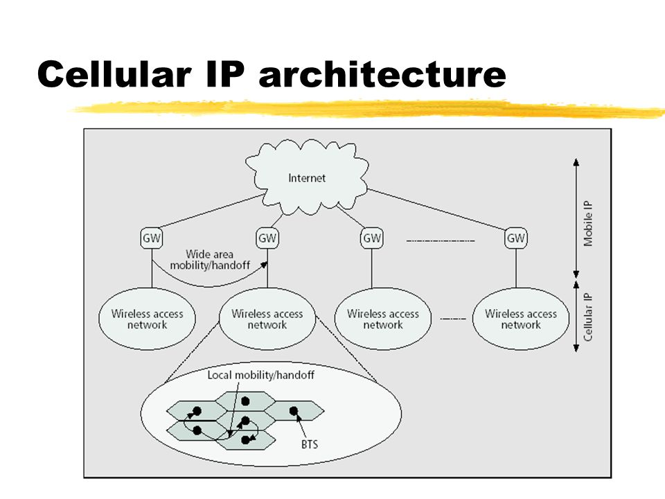 Cellular IP architecture