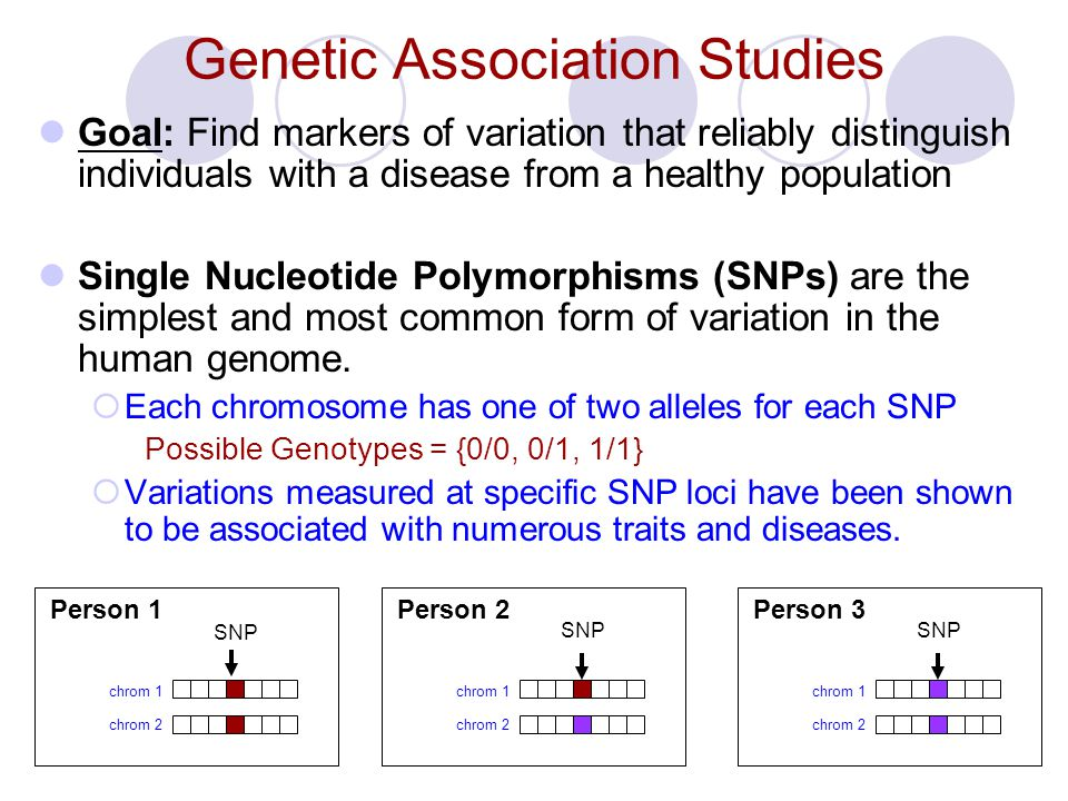 Genetic Association Studies Goal: Find markers of variation that reliably distinguish individuals with a disease from a healthy population Single Nucleotide Polymorphisms (SNPs) are the simplest and most common form of variation in the human genome.